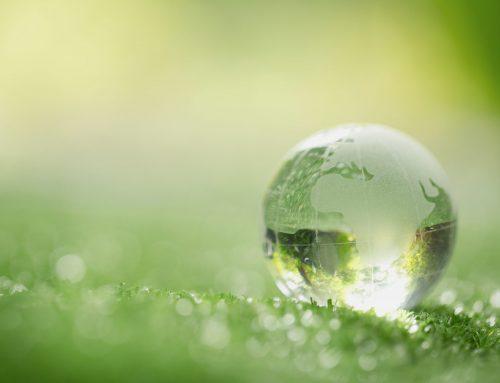Green Rips, come il mondo della stampa professionale diventa ecosostenibile