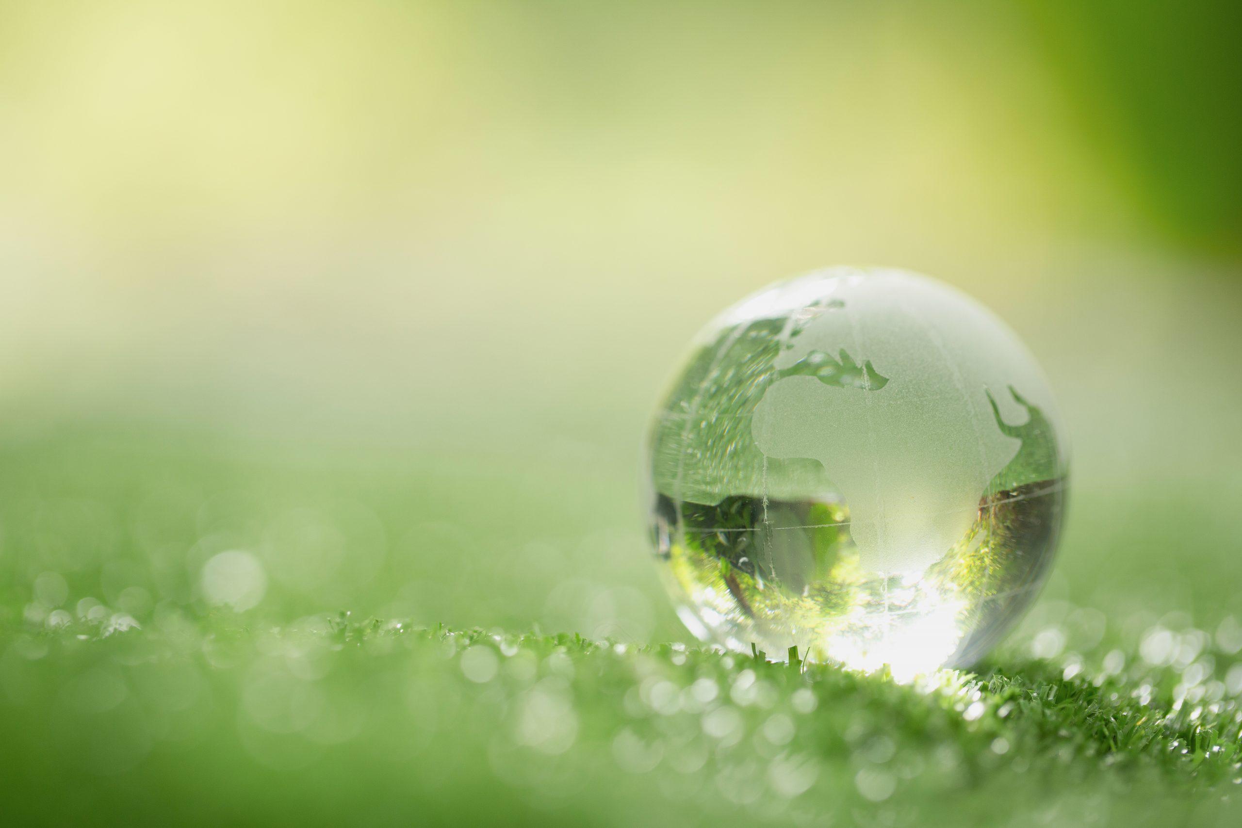Eco Sostenibilità tecnologia rips